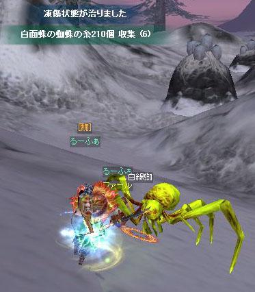 蜘蛛クエ051101