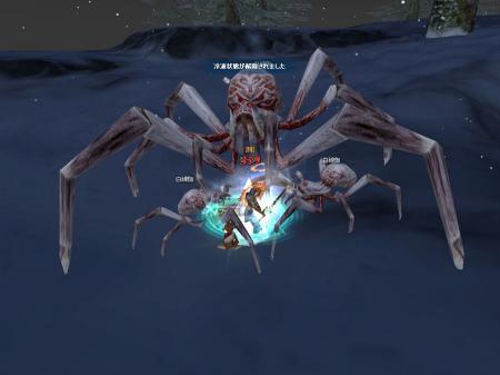 蜘蛛クエ051202