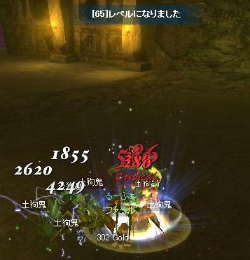 レベル65.jpg