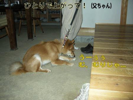 20070813140126.jpg