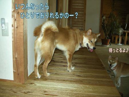 20070813140205.jpg
