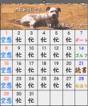リアカレンダー