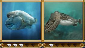 strangefish.jpg