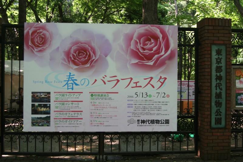 20060521神代植物園バラフェスタ