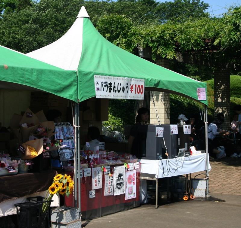 20060521神代植物園バラフェスタ バラまんじゅう