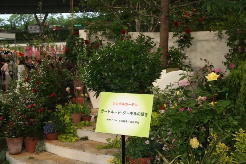 20060521国際バラとガーデニングショウ11 ガートルードジェキル ジーキル