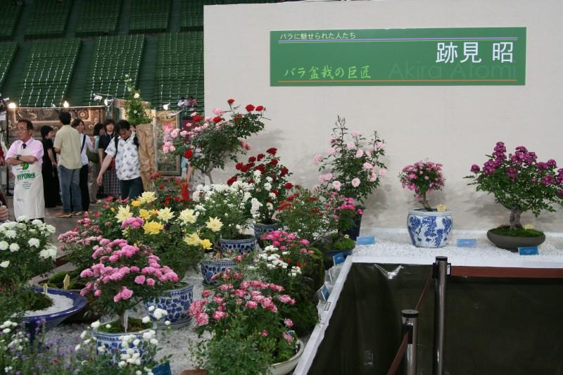 20060521国際バラとガーデニングショウ7