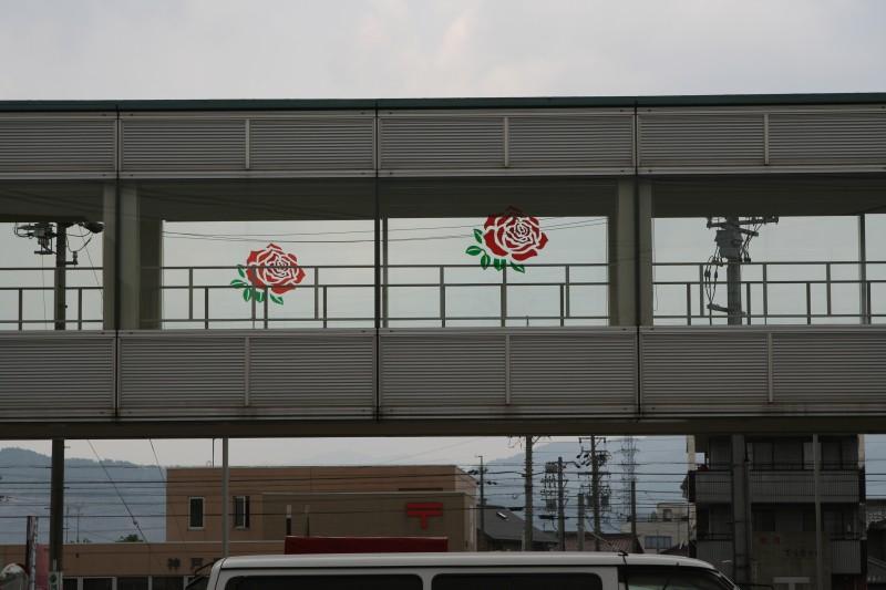 バラの町:神戸町9