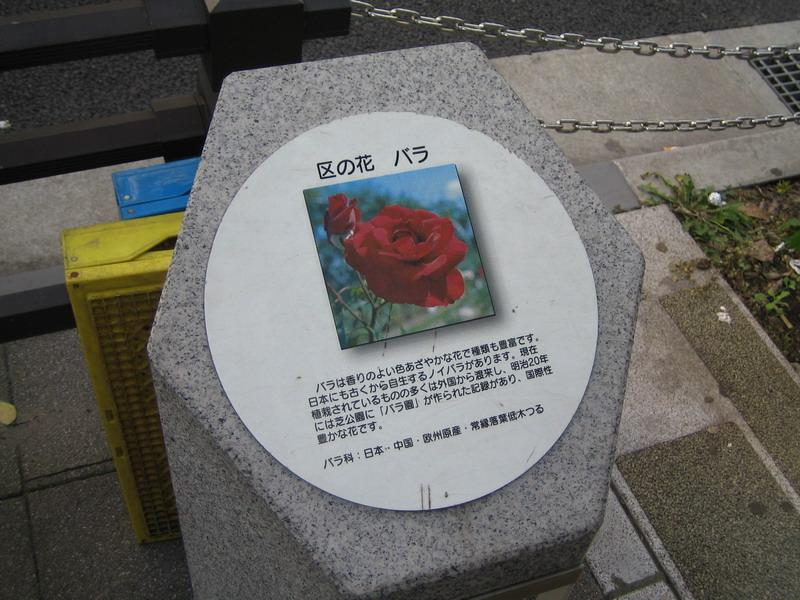 港区の花バラ