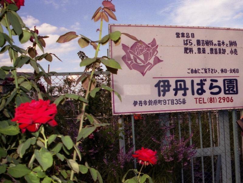 伊丹ばら園