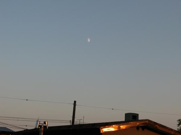 トタン屋根に映えて。。。と、月~