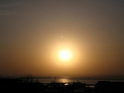久しぶりの夕陽です・・・。