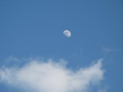 今日の月~~~