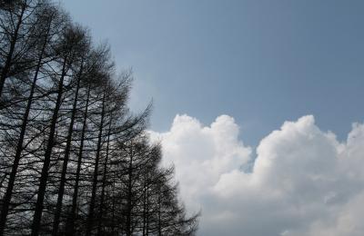 今日は天気も雨。。。