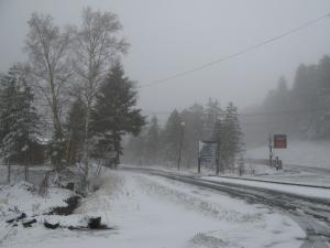 こんな雪でした。。。
