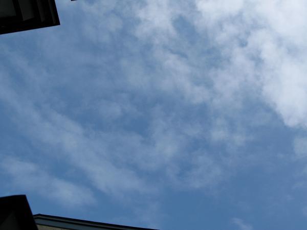 見上げた空~~~