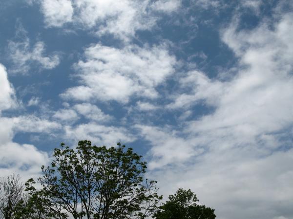 まだまだ雲~~