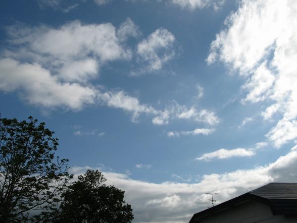 変わりやすい空模様です。。。