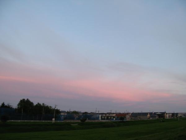 ピンク色と水色の空。。
