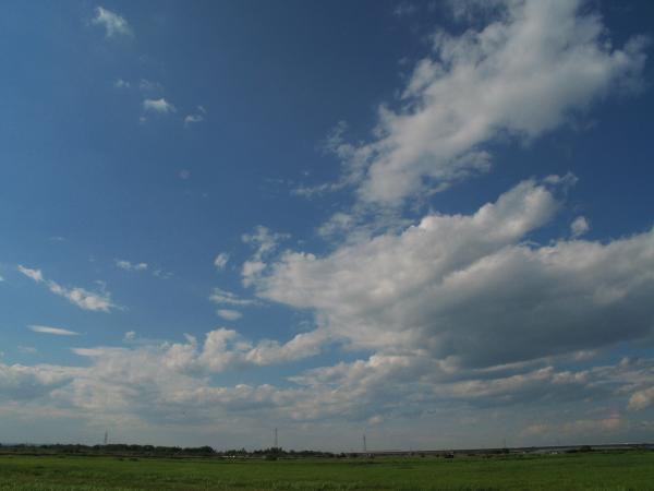 空はいいね~~~~♪
