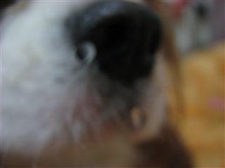 20060925181031.jpg
