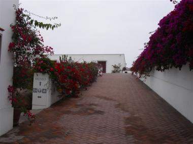 blog 065 Peru