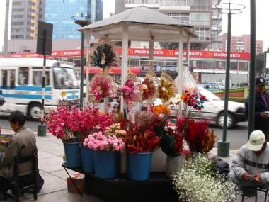 blog 259 Peru