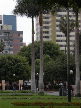 blog 267 Peru