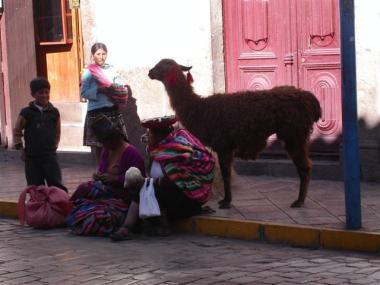 blog 442 peru