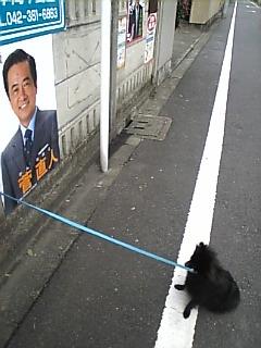 菅直人のポスター.jpg