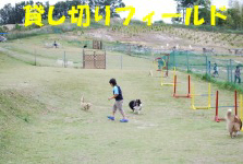 IMG_2049.jpg