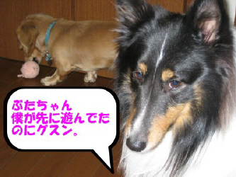 IMG_5817.jpg