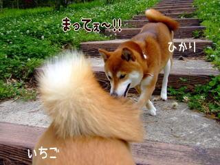 (ノ´∀`)ノ.+.゜*。.+