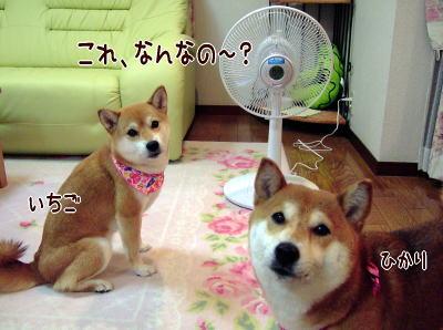 お風がぴゅ~♪