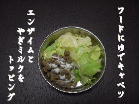20061208133116.jpg