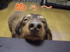 20070106180355.jpg