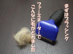 20070107184518.jpg