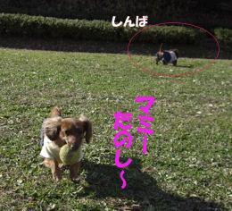 20070112193315.jpg
