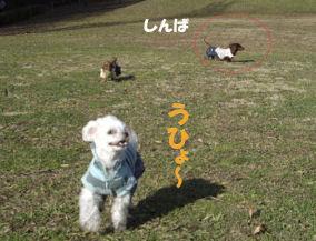 20070112193421.jpg