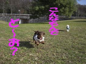 20070112193432.jpg