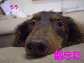20070118193010.jpg