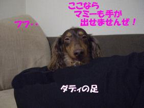 20070123162332.jpg