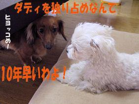 20070131110719.jpg