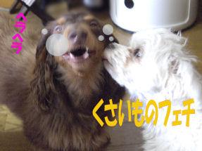 20070210194459.jpg