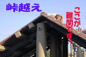 20070212192404.jpg