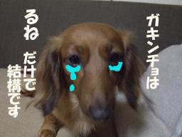 泣いちゃうよ