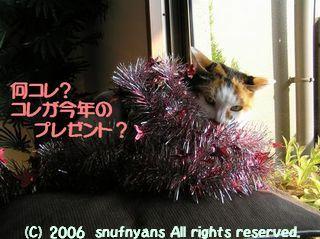 コレが今年のプレゼント?