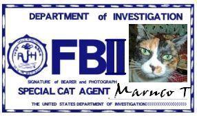 CAT連邦捜査官 NO.005 「Maruco T」