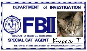 CAT連邦捜査官 NO.006 「Kocoa T」