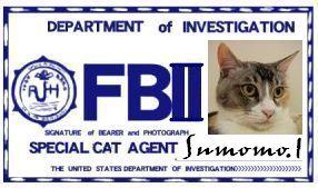 CAT連邦捜査官 NO.010 「sumomo.I」
